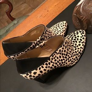 Booties Leather tiger Designer